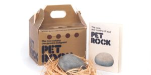 1970s Fads: Pet Rock